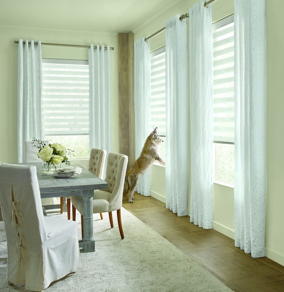 2019_DS_SP_DBS_Perris_Dining-Room_Dog