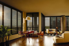 2010_NAN_Sunscreen_Living-Room_Loft_Model