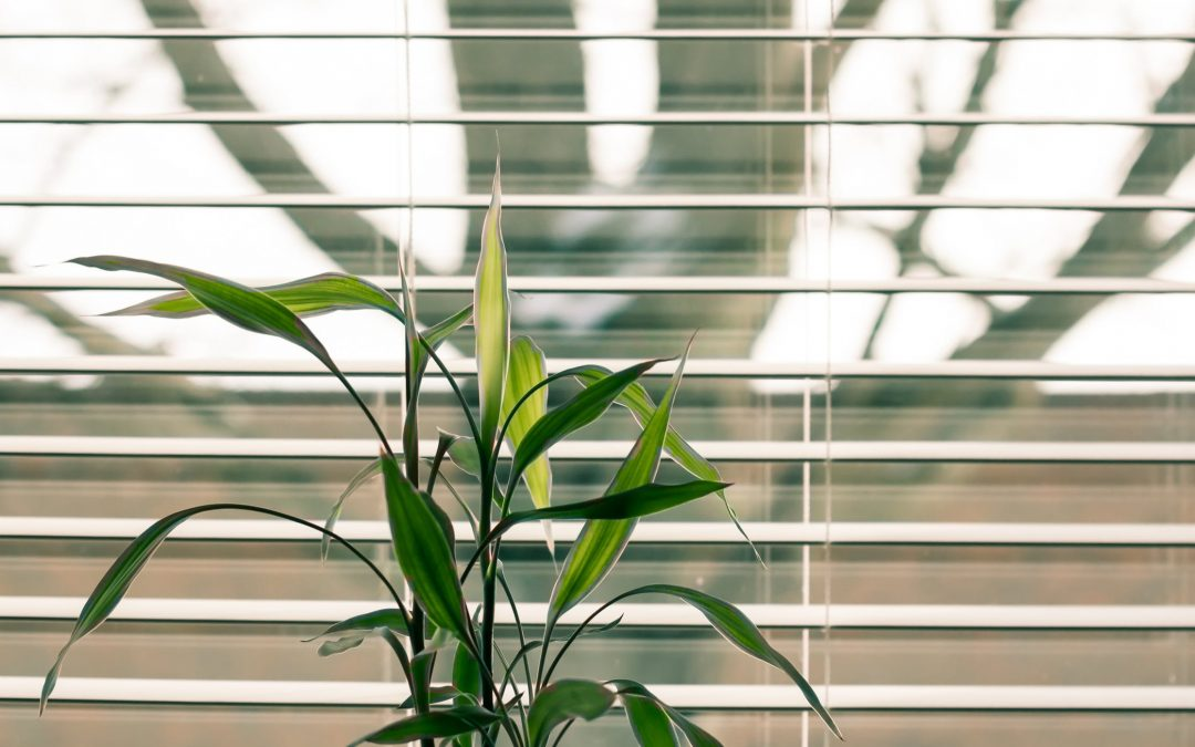 How To Recycle Blinds