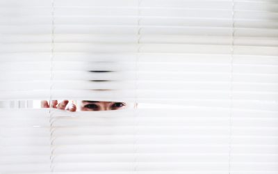 Shutter, Shades, and Blinds – Oh my!